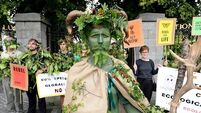 Extinction Rebellion Ireland: 'With nature, people can see it before their eyes'