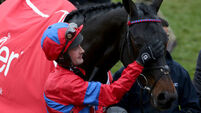 Racing review: Sprinter Sacre back to best as Faugheen falters against stablemate