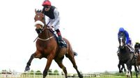 Dermot Weld's Forgotten Rules set for Irish St Leger at Curragh