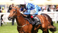 Haydock a must for Weld's Mustajeeb