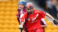 Galway the big winners in senior camogie championship