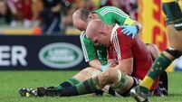 Old injury may stop O'Connell's Toulon move