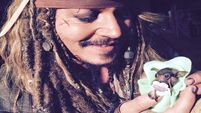 VIDEO: All the feels for Jack Sparrow feeding a baby bat
