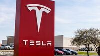 Tesla to resume clearing forest for German car factory