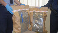 Gardaí seize an estimated €110,000 worth of cannabis herb in Clare