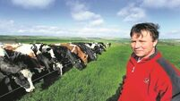 Court orders Cork family to hand over possession of their farm to bank receivers