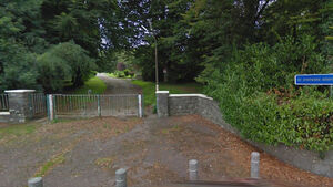 Armed gardaí called after man found carrying axe on hospital grounds