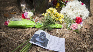 Vigil held for zoo gorilla shot dead after boy fell into enclosure