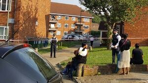 Mother of nine and her nephew shot dead at flat in London