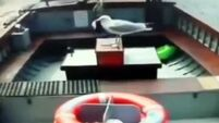 Watch stealthy seagull steal £20 in takings from ferry's moneybox