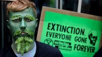 Warning for Extinction protestors: Good advice for the Greens too