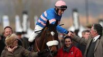 Diego takes Fred Winter Hurdle for Paul Nicholls