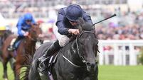 'Speed machine' Caravaggio fired up for Curragh meeting by Aidan O'Brien