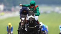 Dermot Weld thinks the Chantilly draw will affect Harzand's chances in Arc