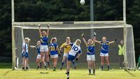 Last-minute point rescues replay for Waterford's Ladies in Division 3 final