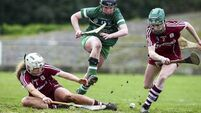 There was only a single point between Galway and Limerick in today's Camogie final