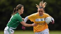Limerick Ladies earn promotion after seven-point win over Antrim
