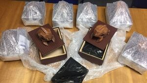 Gardaí intercept consignment of cannabis and arrest man in organised crime probe