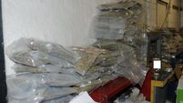 Gardaí investigating the Kinahan gang seize weapons and €4m of drugs in Dublin raid