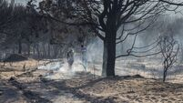 Battle resumes to extinguish Spanish forest fire