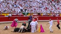 Watch the moment a protestor enters a bullring; three gored in Pamplona's first 2017 bull run