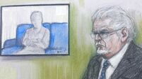 Alleged victim of Rolf Harris speaking out 'for vindication and justice'