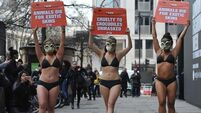 PETA protest - London Fashion Week