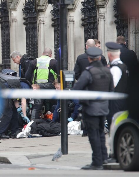 Emergency services close to the Palace of Westminster,