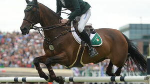 Equestrian: Irish chase rich pickings in Geneva