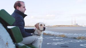 Irish Guide Dogs release moving video showing just how important dogs are