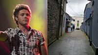 Outcry in Mullingar to name walk way after Niall Horan