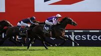 Wings of Eagles wins the Epsom Derby at 40-1