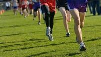 Tralee's Oisin Spillane claims senior crown in Munster Schools Cross-Country