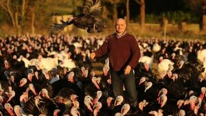 Louth farmer, who sleeps in turkey shed for first two weeks of birds' lives, has no fears over Brexit