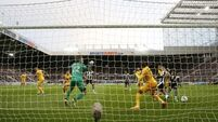 Newcastle confirm Premier League status with win over Preston