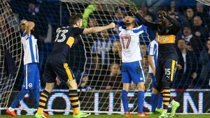 Mo Diame fluke revives Newcastle who pinch late victory at Brighton