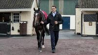 Aidan O'Brien quintet remain in hat for French Derby at Chantilly