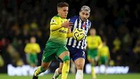 Brighton stretch winning home run with victory over struggling Norwich