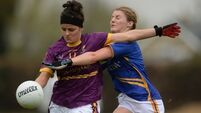 Tipperary and Wexford Ladies must play final again after referee makes dramatic intervention