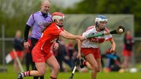 Cork secure fifth Division 2 Camogie title with win over Derry