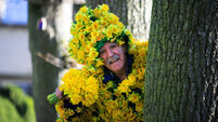 'It's an awful journey'; People urged to get behind Daffodil Day and give what they can