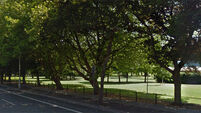 Local campaign saves 42 trees in Dublin's Fairview Park