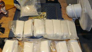 Gardaí seize over €1m worth of drugs in Co Offaly
