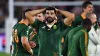 World Cup-winners De Allende and Snyman to join Munster next season - reports