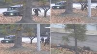 CCTV shows North Korean soldier shot five times as he defects into South Korea