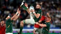 Munster champion coup will deepen Springbok influence