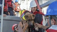 Two women and their dogs rescued by US Navy after five months adrift at sea