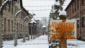 Readers' blog: Human rights abuses began before the Holocaust