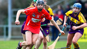 Perfect 10 for Cotter as Cork hold off Wexford