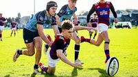 St Munchin's hold off dramatic rally to seal Pres semi-final